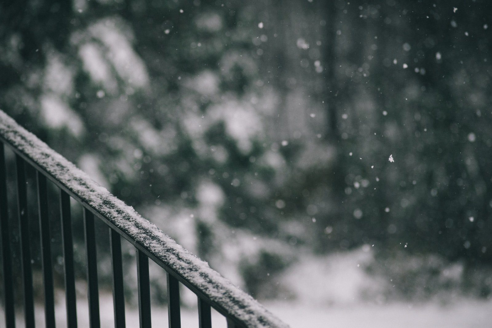 selective focus photography of falling snow on barrier
